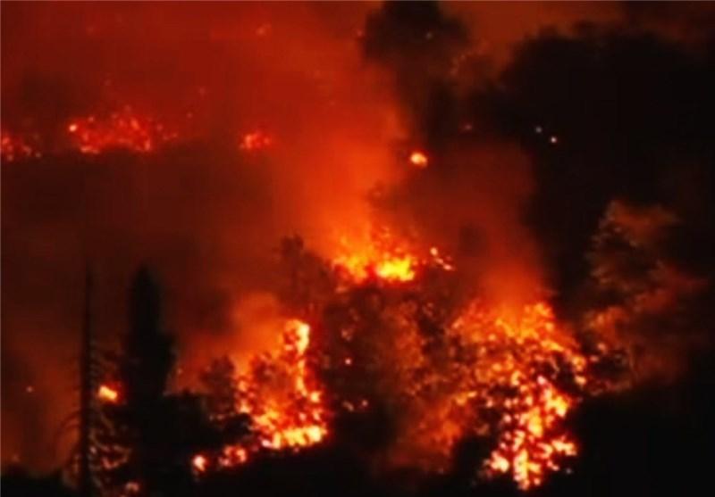 شروع به کار فیل های آتش نشان در جنگل های اندونزی