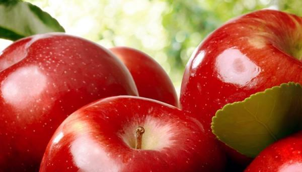 طبع سیب گرم است یا سرد؟ مصلحات و خواص آن چیست؟