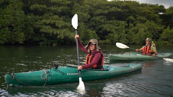 سفر به اعماق جنگل های قدیمی جزیره ایریوموت در ژاپن